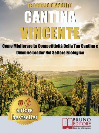 """Teodosio D'Apolito: Bestseller """"Cantina Vincente"""", il libro che insegna come rilanciare i prodotti della propria cantina"""